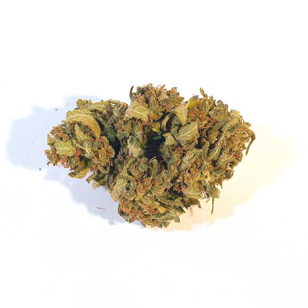 CBD Blüten Mango Kush